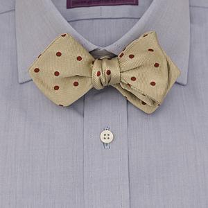 F.M. Allen Bow Tie